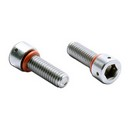 Socket Cap Drilled Head